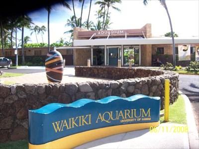 Waikiki Aquarium Honolulu Hi Public Aquariums On