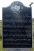 Image for Denuded Ouachita Rock Belt