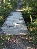 Image for Grand River Park Footbridge 2 -Georgetown Township, Michigan