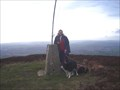 Image for Moel Gwy