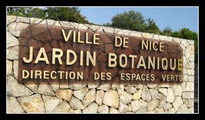 Jardin botanique de nice botanical gardens on for Jardin botanique nice