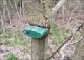 Image for Padlock on a tree - Swidnik, Poland
