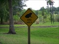 Image for Toad Crossing - St. Petersburg, FL