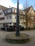 Image for Narrenbrunnen / Fool's Fountain Rottenburg, Germany, BW
