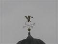 Image for Lilies- Weedon, Bucks
