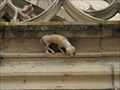 Image for Little Dog above the Regensburg Cathedral Portal - Regensburg, Bavaria, Germany