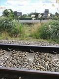 Image for Main Trunk Railway -  North Island, New Zealand