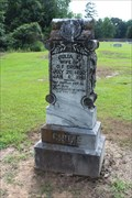 Image for Julia E. Crone - Shady Grove Cemetery - Wood County, TX