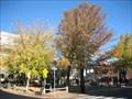 Image for Winthrop Park - Cambridge, MA