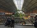 Image for Atocha Railway Station - Madrid, Spain