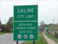 Image for Saline Michigan - Brecon Wales.
