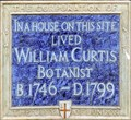 Image for William Curtis - Gracechurch Street, London, UK