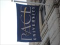 Image for Pace University Flag -  New York City, NY