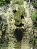 Image for Green Skull in a Waterfall - Mittelhäusern, BE Switzerland