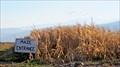 Image for Colville Corn Maze - Colville, WA