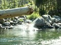 Image for Icicle River