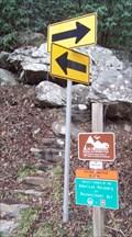 Image for Roaring Branch Trail - Big Stone Gap, VA