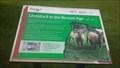 Image for Bronze Age Livestock - Flag Fen Archaeology Park - Peterborough, Cambridgeshire