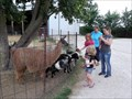 Image for Big Joel's Safari - Wright City MO
