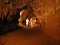 Image for THURSTON (Nahuku) Lava Tube ~  Volcano, Hawai`i U.S.A.