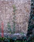Image for Brynsiencyn, St Nidan's Church