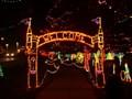 Image for Rhema Christmas Lights