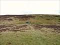 Image for Phantom Crash Site, Hafod Ithel, Trefenter, Ceredigion, Wales