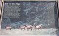 Image for Elk Meadow Signs - California