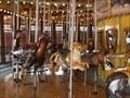 Image for African Carousel, Toledo Zoo - Toledo, Ohio
