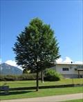 Image for Karin Kuester - Nakusp, British Columbia
