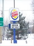 Image for Burger King - M-36 - Green Oak Township, Michigan
