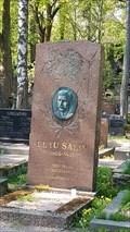 Image for Eetu Salin - Hietaniemi Cemetery - Helsinki, Finland
