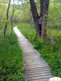 Image for Mendon Boardwalk