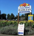 Image for Annual Swan Island Dahlia Festival, Canby, OR