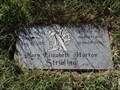 Image for 101 - Mary Elizabeth Horton Stribling - Mount Zion Cemetery - Grayson County, TX