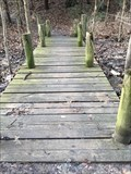 Image for River Bluff Park Trail Footbridge - Saugatuck, Michigan