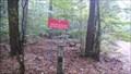 Image for Obszar Natura 2000 Uroczyska Puszczy Zielonki - Zielonka, Poland
