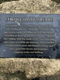 Image for Chicago Riverwalk Flora and Fauna Plaques - Chicago, IL