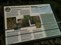 Image for Wetland Preservation - San Clemente, CA