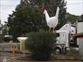 Image for Chicken - Moonbi, NSW, Australia