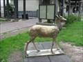 Image for Iron Deer - San Anselmo, CA