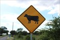 Image for Cattle Crossing - Parker County, TX