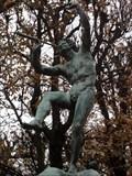 Image for Faune Dansant  -  Paris, France