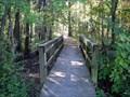 Image for Bottomlands Trail Bridge - Big Oak Tree State Park - Missouri