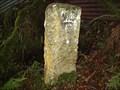 Image for WD13, Dartmoor