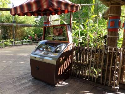 Busch Gardens - Chimps.