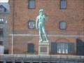 Image for David - Copenhagen, Denmark