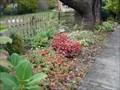 Image for Butterfly Garden @ Bancroft School - Haddonfield, NJ