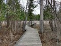 Image for Trail 26C Boardwalk in Stoney Swamp - Ottawa, Ontario, Canada