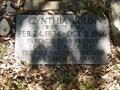 Image for Cynthia Bolin - Waresville Cemetery - Utopia, TX